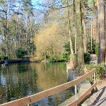 De Waldpark