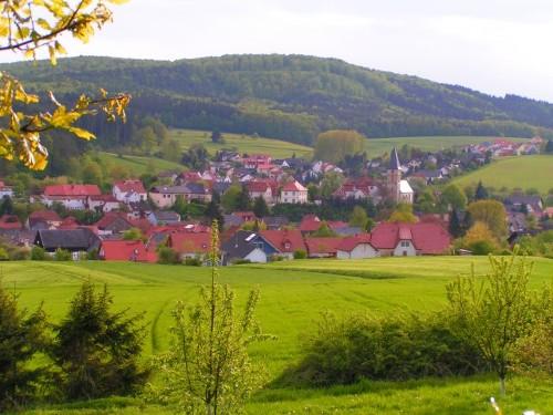 Mistelfeld Village Guide